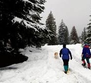 Mt. Hood Resort Announces New Winter Ski Packages