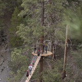 Navitat Canopy Adventures Offers Ziplines
