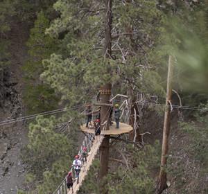 Navitat Canopy Adventures Offers Ziplines